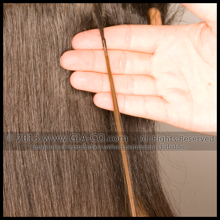 Bonded Strand Hair Extension Strand Application STEP SIX: Here you can see the final result of the bonded hair extension application using the heated applicator tool and the rolling technique to shape the bond. The bond is a small smooth bead that resembles a grain of rice.